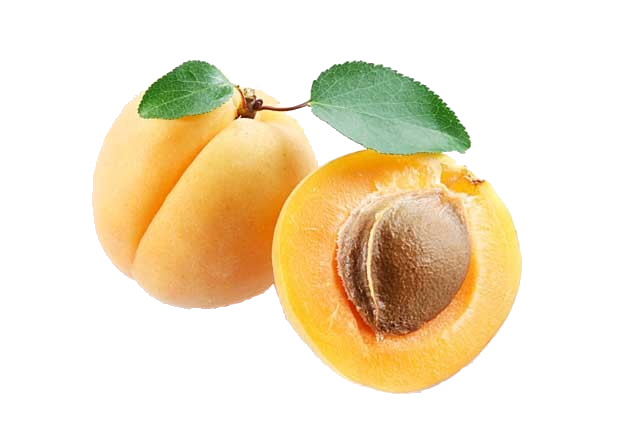 apricot-.png